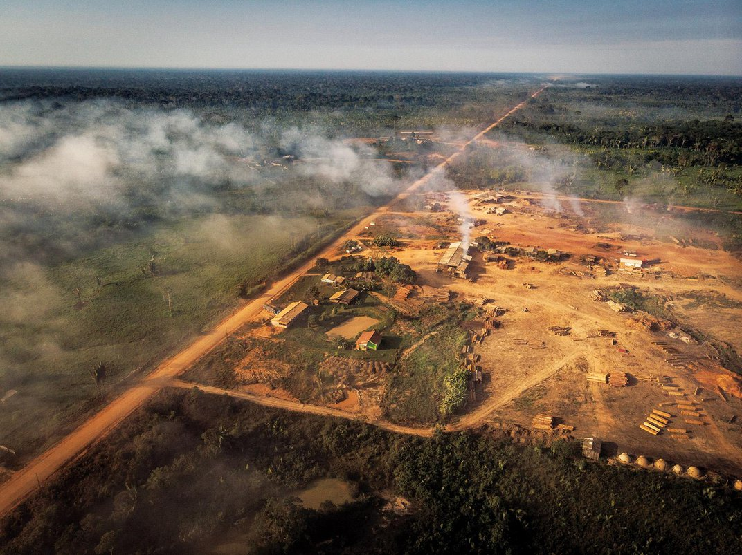 Is the Amazon on a Road to Ruin?