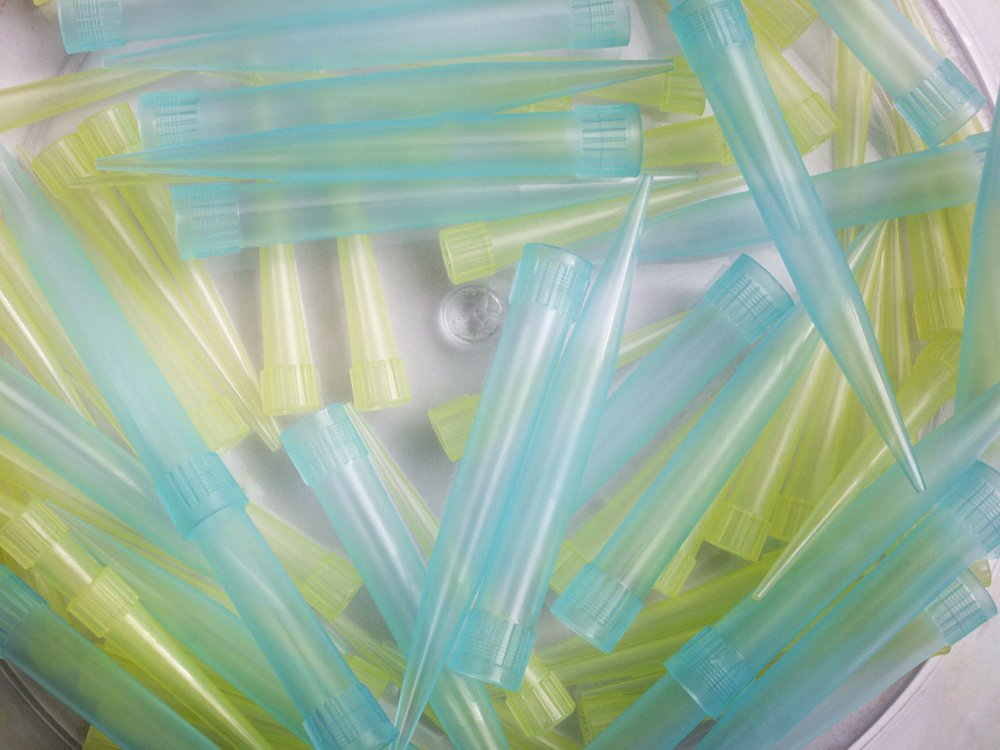 A close-up image of blue and yellow pipette tips on a white surface