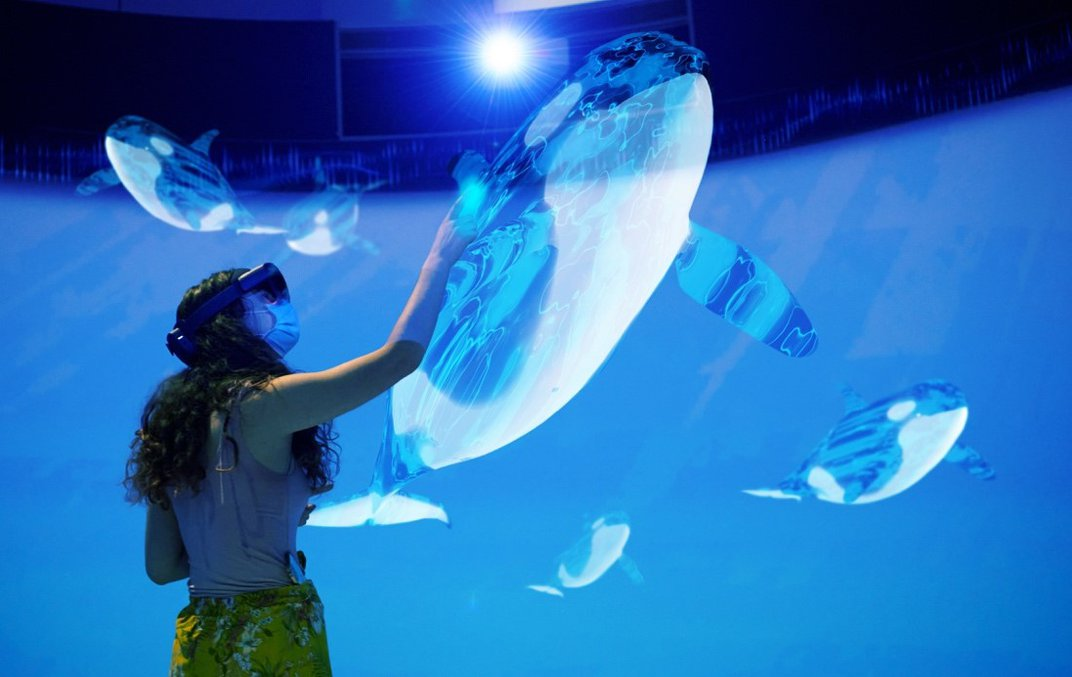 """A person in an augmented reality experience wears a headset and reaches out to """"to touch"""" a holographic killer whale while other orcas """"to swim"""" background."""