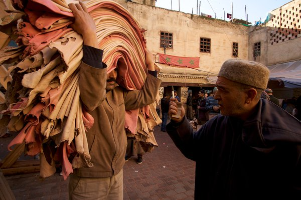 Leather Auction in Fès thumbnail