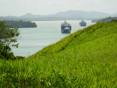 Many terrestrial birds disappeared in Barro Colorado Island, in the Panama Canal, despite their abundance in adjacent mainland forests, because they could not cross Gatun Lake to maintain populations on the island.