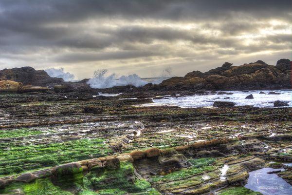 Point Lobos Shore at Sunset thumbnail