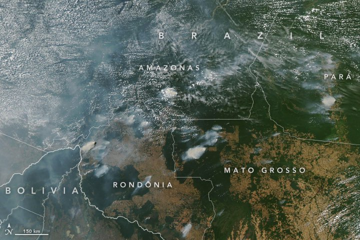 Three Things to Know About the Fires Blazing Across the Amazon Rainforest