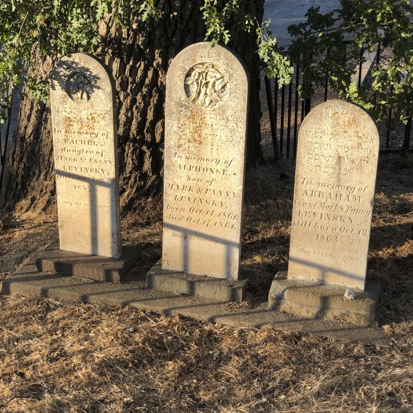 Witnesses to history, three tombstones in the Jewish cemetery thumbnail