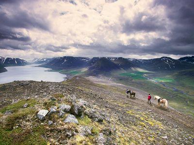 Riders view the incredible vista in Dýrafjörður, Iceland, alongside their equine companions.