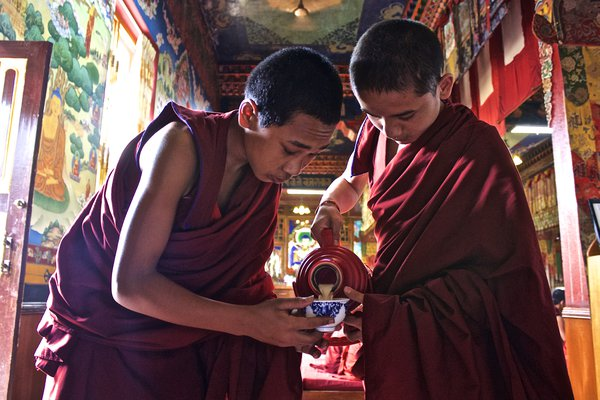 Young Monks Serving Tea. thumbnail