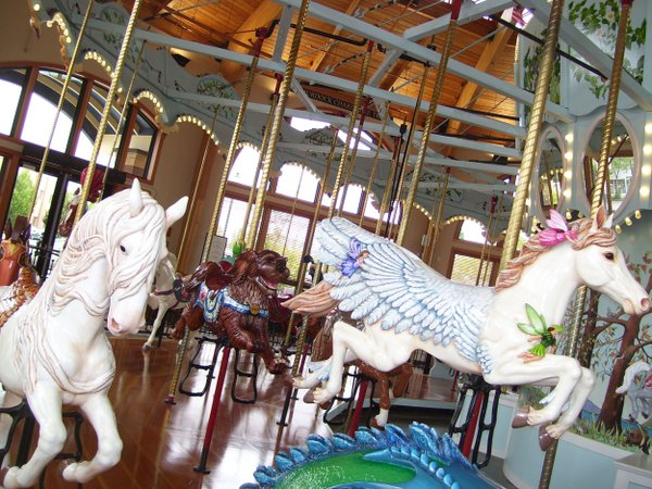 Catching these horses on the run in the Albany Carousel & Museum is tough. thumbnail