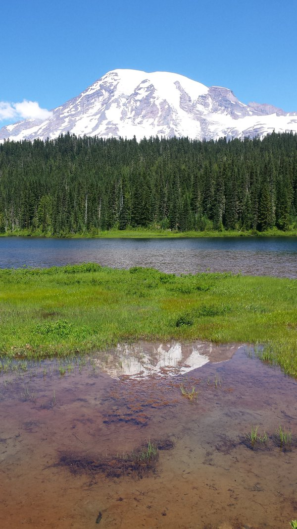 Mount Rainer with reflection in Reflection Lake thumbnail