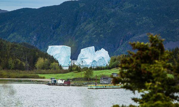 A Large Iceberg at Jacksons Cove, Newfoundland thumbnail