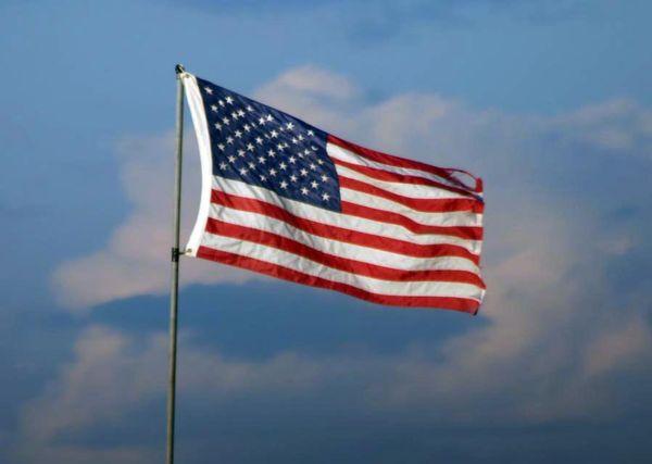 I pledge Allegiance thumbnail