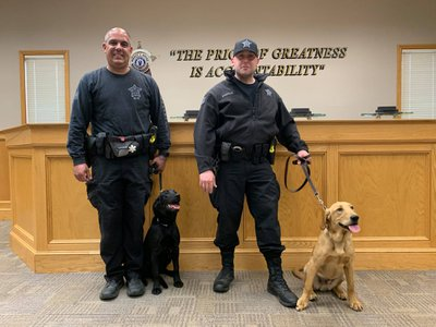 Officers Paul Douglas (left) and Theodore Santos (right) stand with their newest Covid-19 K9 unit: a female black lab named Huntah (left) and a male golden lab-retriever mix, Duke (right).