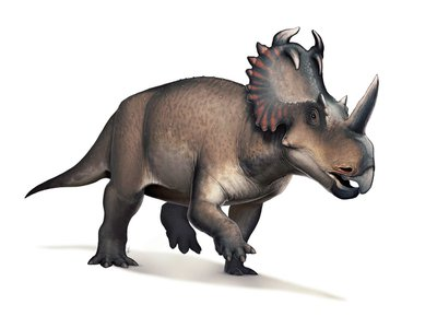 Centrosaurus had the first well-documented case of malignant bone cancer in a non-avian dinosaur.
