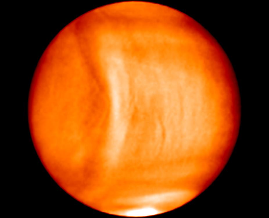 Venus Wave