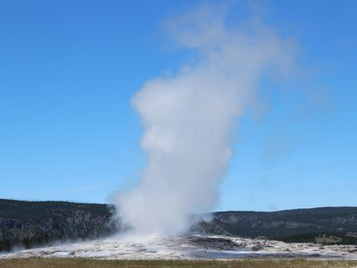 A 2014 eruption of Old Faithful, one of its many consistent outbursts