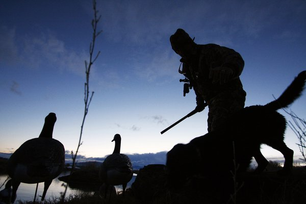 Andy Lee, a water fowl hunter of Creede, Colo., and his dog, Birdie May, call it a day after working with Birdie May to hunt waterfowl in Monte Vista on March 7, 2010. thumbnail