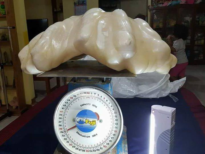 At 75 Pounds, This Could Be the World's Largest Pearl