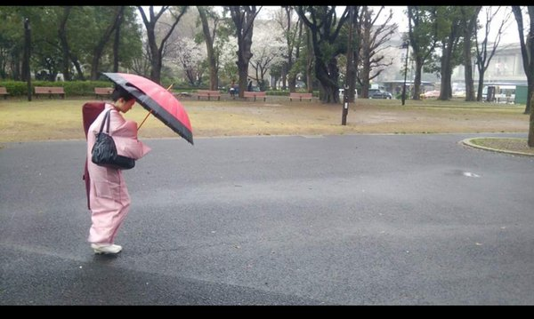 Geisha Walking in the Rain thumbnail