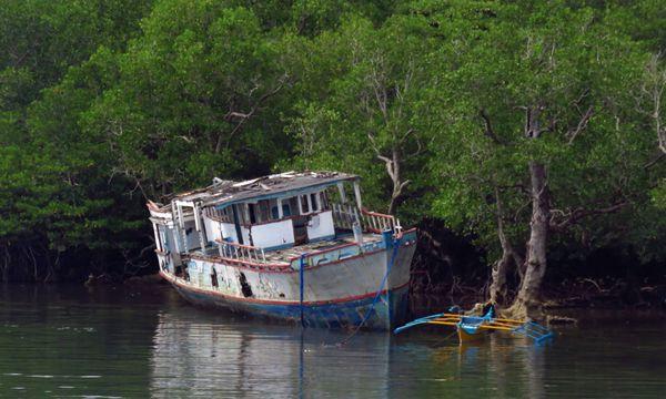 Decaying boat thumbnail