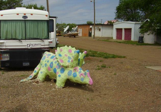 Polka-Dot Triceratops,  Jordan, Montana