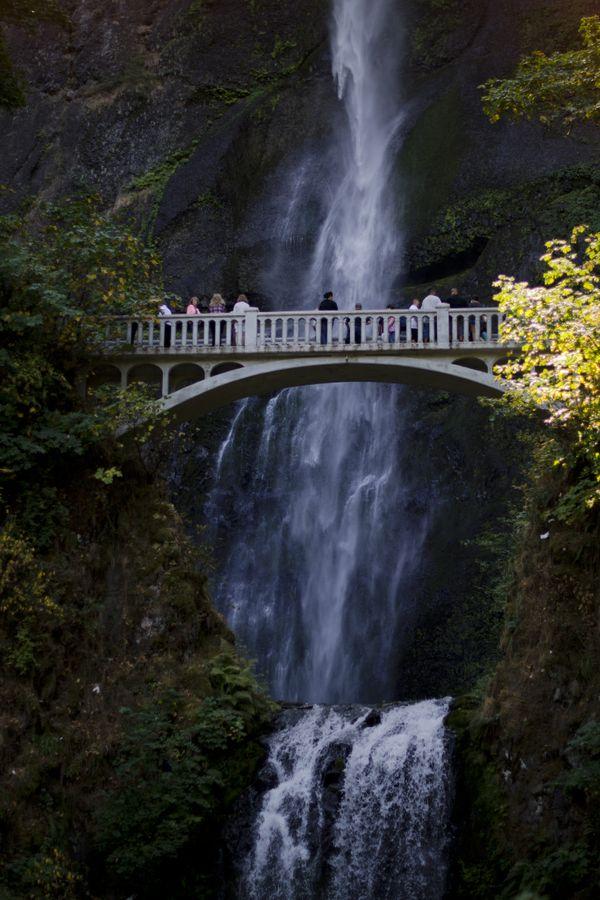 Multonah Falls in the Summer thumbnail