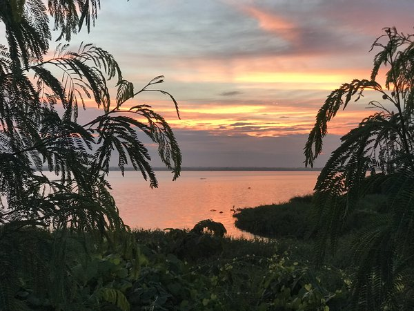 Beautiful Magdalena river awakening thumbnail