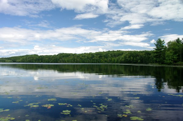 Reflections on a pristine lake in Ontario Canada thumbnail