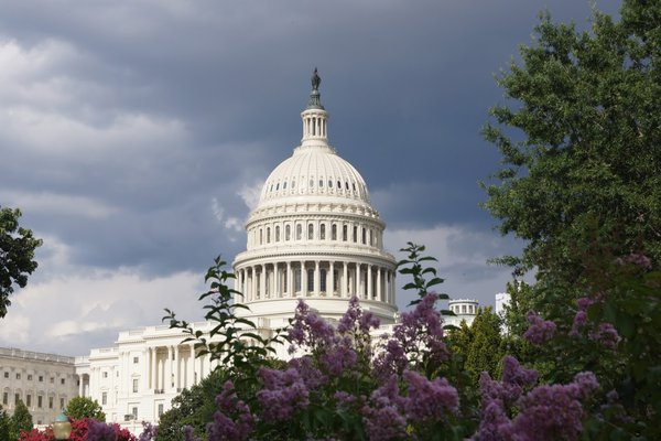 U.S. Capitol, View from the Botanical Gardens thumbnail