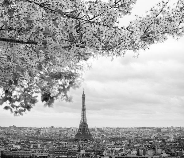 spring in Paris thumbnail