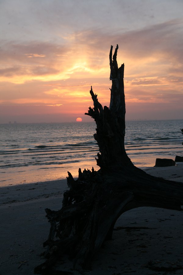 Totem Sunrise thumbnail