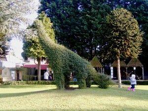 20110520083212brachiosaurid-topiary-300x225.jpg