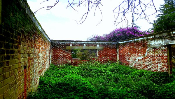 Abandon House at Abandon park. thumbnail