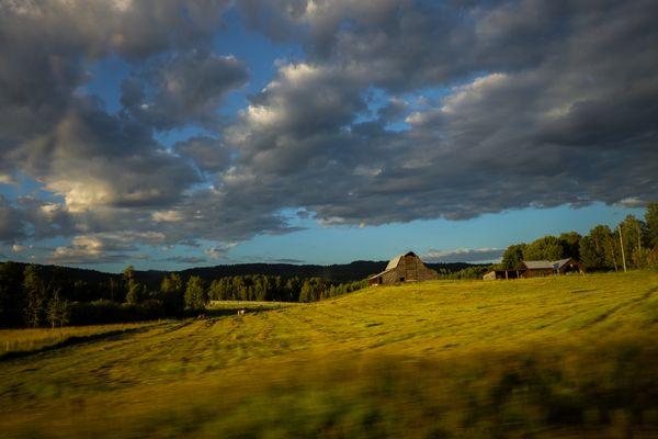 Dawn of farmland thumbnail