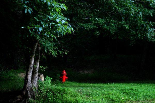 National park fire hydrant thumbnail