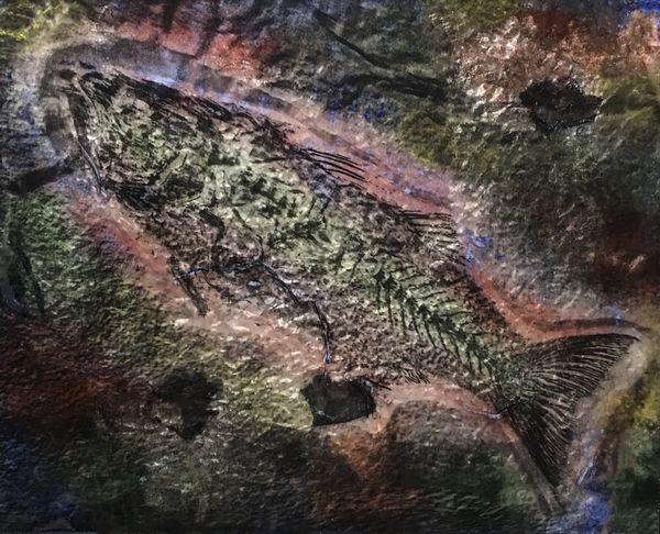Fossil Fish thumbnail