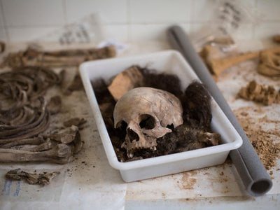 A skull with other bones of a victim's body is classified by anthropologists following an exhumation of a mass grave at the cemetery of Paterna, near Valencia, Spain,