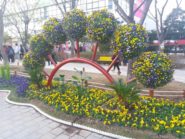 Huge fan made by using flowers in Busan, South Korea thumbnail