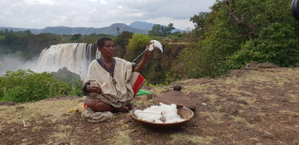 Old Ethiopian woman making yarn from cotton thumbnail