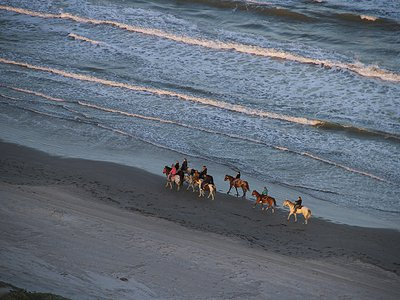"""""""You're in three dimensional space"""": """"Aerial America"""" got the swoop on Padre Island during the series' visit to Texas."""
