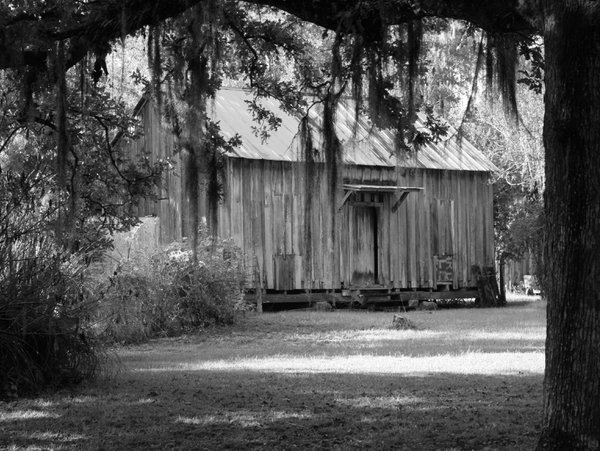 Old Southern Home thumbnail