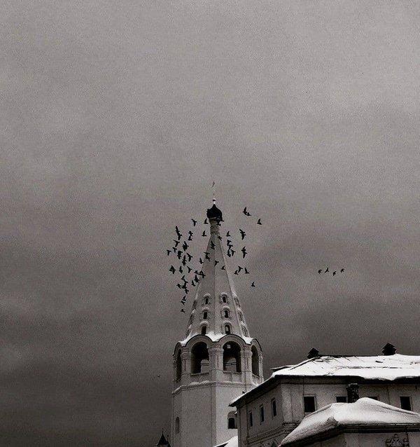 Crows in the sky, under the heaven monks thumbnail
