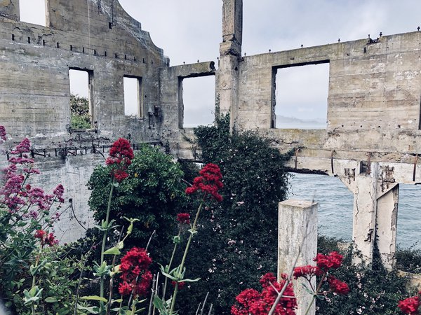 Ruins on Alcatraz Island thumbnail