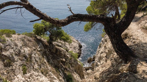 Secret Calanque Trail thumbnail
