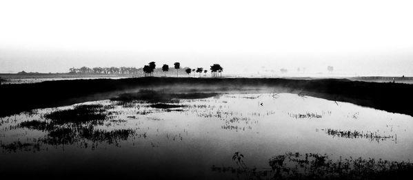 Landscape: Rural Bengal  thumbnail