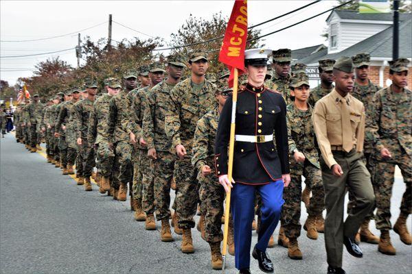 American Parade thumbnail
