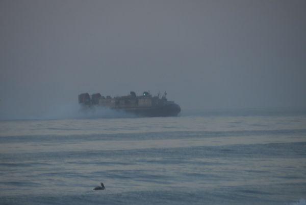 A pelican racing a Navy Landing craft thumbnail