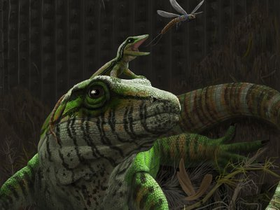 An artist's illustration of Dendromaia unamakiensis, a 310-million-year old land-dwelling vertebrate that looked a like a modern monitor lizard, pictured here with its offspring