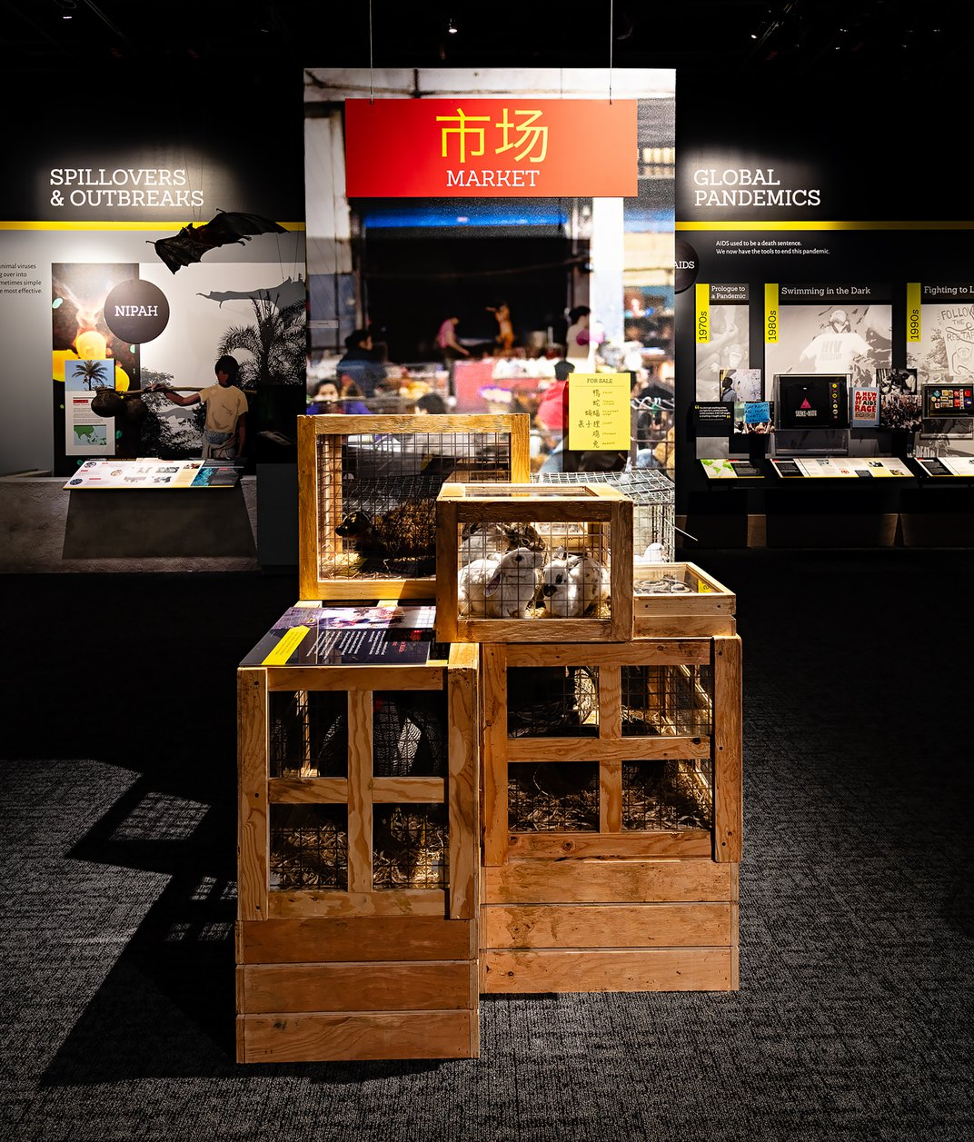 A display consisting of replicated wild animals in wooden crates to mimic a live animal market in an exhibition about pandemics at the Smithsonian's National Museum of Natural History.