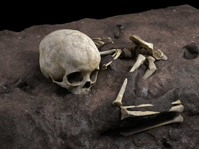 A virtual reconstruction of the child's remains found in Panga ya Saidi cave in Kenya