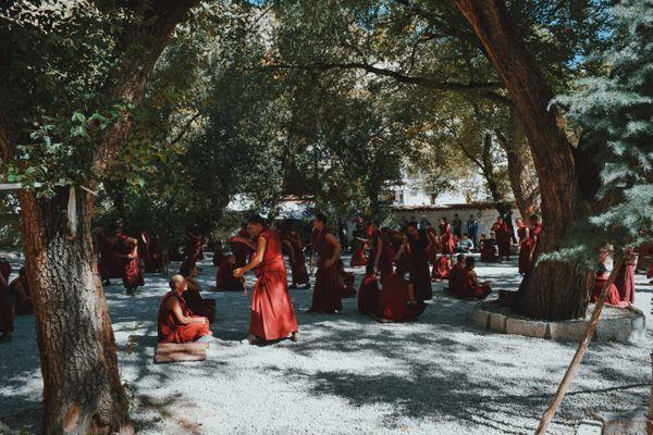 Tibetan monk debates at the Sera Monastery thumbnail