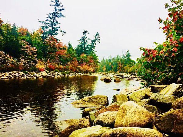 Swift River along the Kanc thumbnail